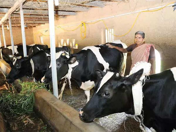 AHIDF loan Scheme: Loans To Farmers Associated With Dairy Farming